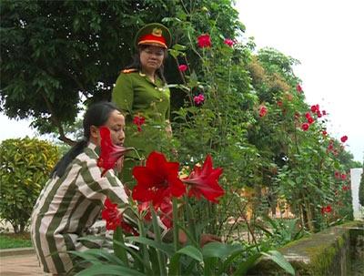 Lặng lẽ chăm sóc mây luống hoa trong khuôn viên trại