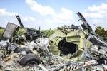 Tình báo Đức quy trách nhiệm vụ MH17 cho quân nổi dậy Ukraine
