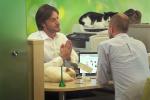Ngân hàng lớn nhất nước Nga câu khách bằng mèo