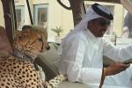 Những ngón 'chơi bời' xa xỉ cực độ chỉ có ở Dubai